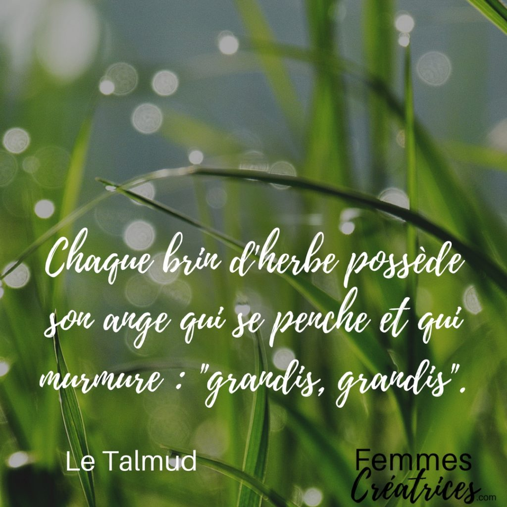 citation creativite