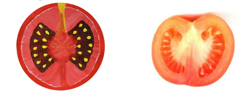 tomate peinture